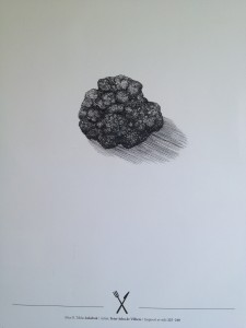 Alice illustrasjonene 015